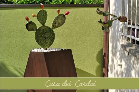 cattolica-casa-dei-cordai-foto-logo-4.jpg