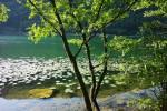 lombardia-lago-como-annone-203.jpg