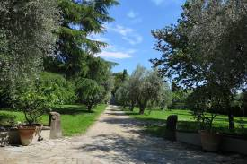 toscana-firenze-villa-nobile-castello-22.jpg