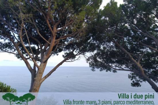 villa-due-pini3-1.jpg